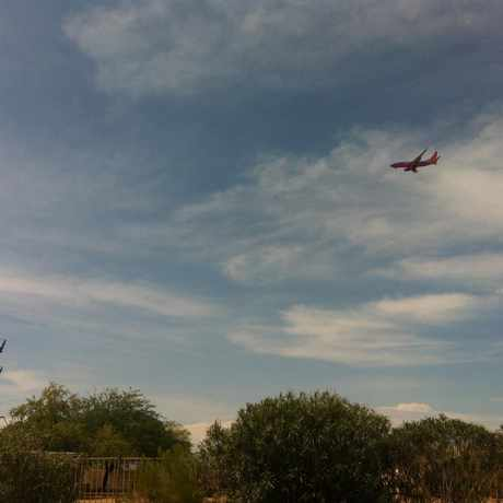 Photo of Airplane in Tempe