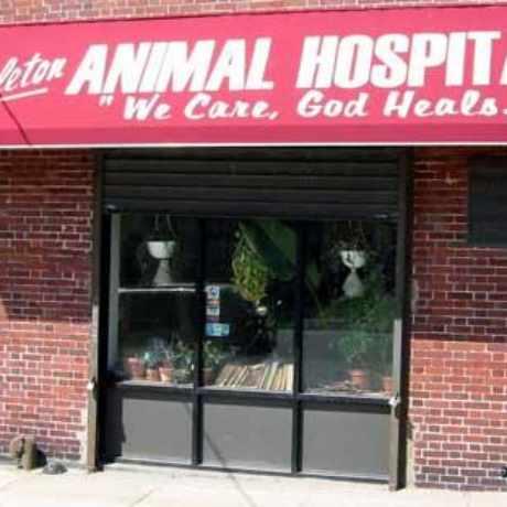 Photo of Stapleton Animal Hospital in Stapleton, New York