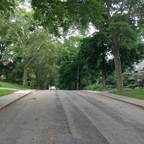 Photo of Fair Oaks Street in Squirrel Hill North, Pittsburgh