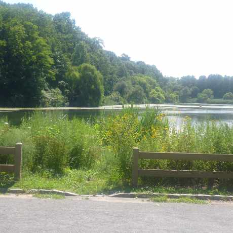 Photo of Local Lake in Bayside, New York